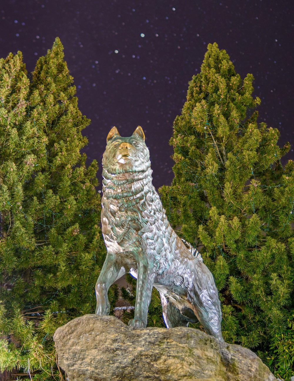 UConn Husky Statue